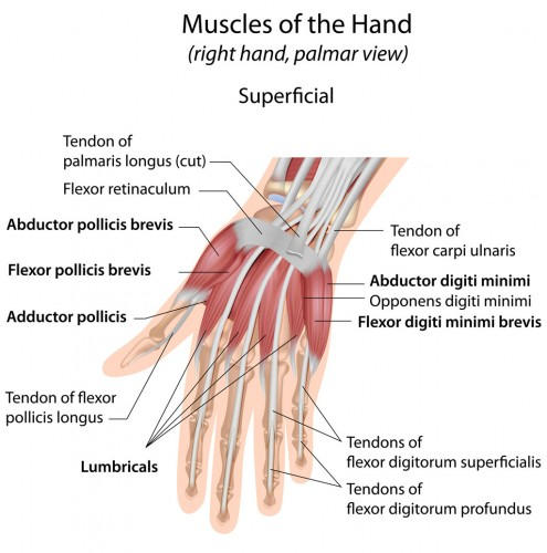 OSMI Dr Boothby treat hand disorders