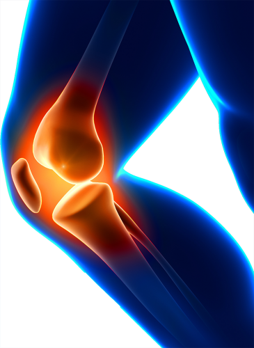 Knee Pain and Injury