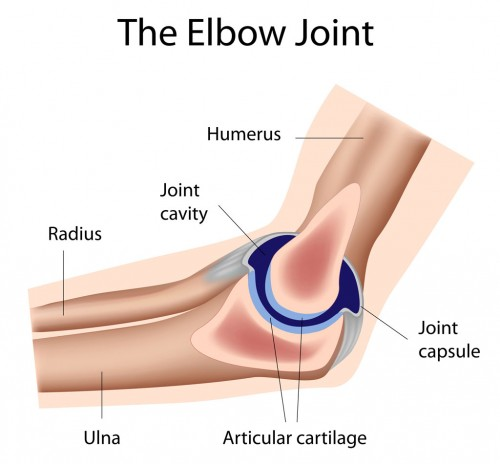 elbow joint injury and disorders